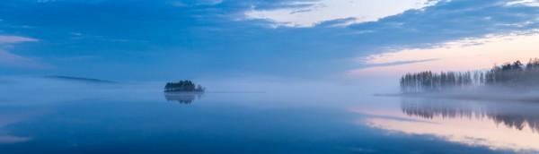 Petri_Damsten-Bird_in_the_Morning_Mist-Flickr