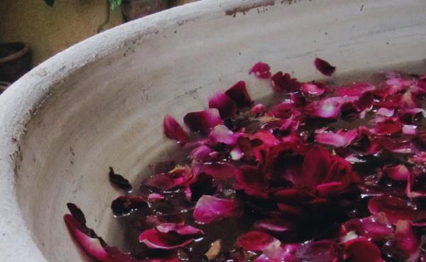 Saba-Husain_poem-image
