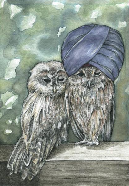2_Mulligatawny-Owl